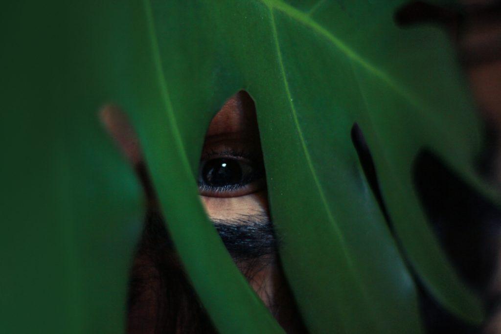 Hide eye