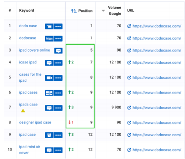 exemple shopify seo dodocase
