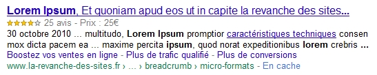rich snippet google